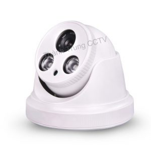Camera ip dome 1.3Mp 8019